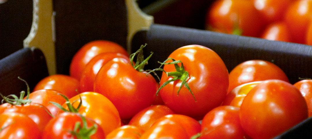 featured_salad